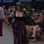 Dirndlnordweilweinfest